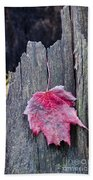 Maple Leaf - Uw Arboretum - Madison Bath Towel