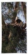 Marco Eagle - Protecting Its Nest Bath Towel