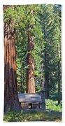 Giant Sequoias Mariposa Grove Bath Towel