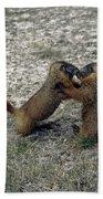 4m09150-02-marmot Fight Bath Towel