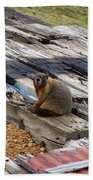Marmot Resting On A Railroad Tie Bath Towel