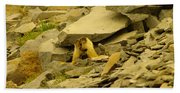 Marmots Playing Hand Towel