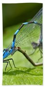 Mating Damselflies Bath Towel