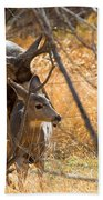 Mating Mulies Bath Towel