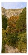 Mckittrick Canyon Trail Bath Towel