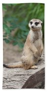 Meerkat Bath Towel