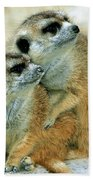 Meerkats Bath Towel