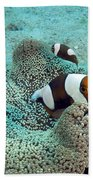 Meet The Nemo Family Bath Towel