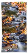 Memorial Falls Iv Bath Towel