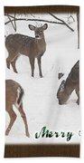 Merry Christmas Card - Whitetail Deer In Snow Bath Towel