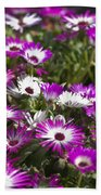 Mesembryanthemums 5 Bath Towel