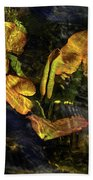 Michigan Fresh Water Ripples Bath Towel