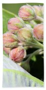 Milkweed Before Bloom Bath Towel