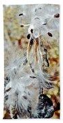 Milkweed Pod On Hart-montague Trail In Northern Michigan Bath Towel