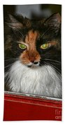 Miss Gizzie Waits By Diana Sainz Bath Towel