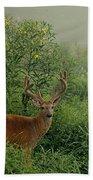 Misty Morning Deer Bath Towel