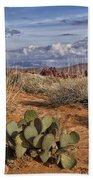 Mojave Desert Cactus Bath Towel