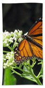 Monarch Butterfly 59 Bath Towel