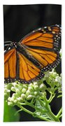Monarch Butterfly 60 Bath Towel