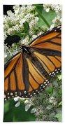 Monarch Butterfly 62 Bath Towel