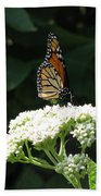 Monarch Butterfly 71 Bath Towel