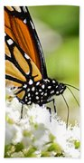 Monarch Moment Bath Towel
