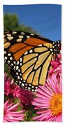 Monarch On Pink Asters Bath Towel