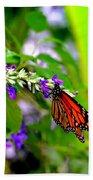 Monarch With Sweet Nectar Bath Towel