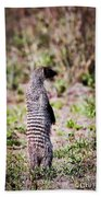 Mongoose Standing. Safari In Serengeti Bath Towel
