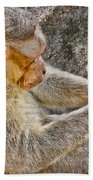 Monkey Playing With Tail Bath Towel