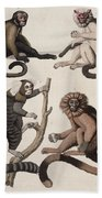 Monkeys Bath Towel