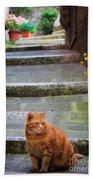 Montepulciano Cat Bath Towel