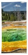 Morning Glory Pool Bath Towel
