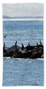 Morning Meeting - Lyme Regis Bath Towel