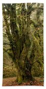 Moss-covered Bigleaf Maple  Bath Towel