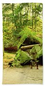 Moss Covered Rocks In Forest, Rocky Bath Towel