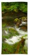 Moss Covered Trees Foregound Eagle Creek Bath Towel