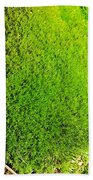 Moss Bath Towel
