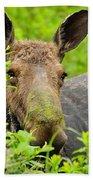 Mossy Moose Bath Towel