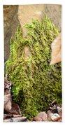 Mossy Rock Abstract 2013 Bath Towel