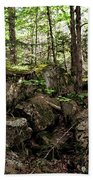 Mossy Rocks In The Forest Bath Towel