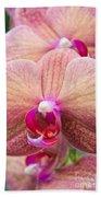 Moth Orchid Bath Towel
