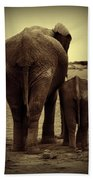 Mother And Baby Elephant In Black And White Bath Towel
