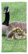 Mother And Young Bath Towel
