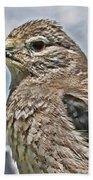 Mountain Bird Bath Towel