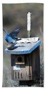 Mountain Bluebirds Mating Bath Towel