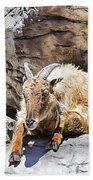 Mountain Goat Bath Towel
