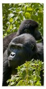 Mountain Gorilla With Infant  Bath Towel