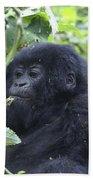 Mountain Gorillas Bath Towel