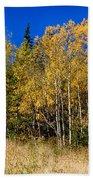 Mountain Grasses Autumn Aspens In Deep Blue Sky Bath Towel